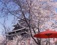 周辺の観光:島根県東部:松江市